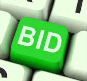 FCC Spectrum Auction Bid